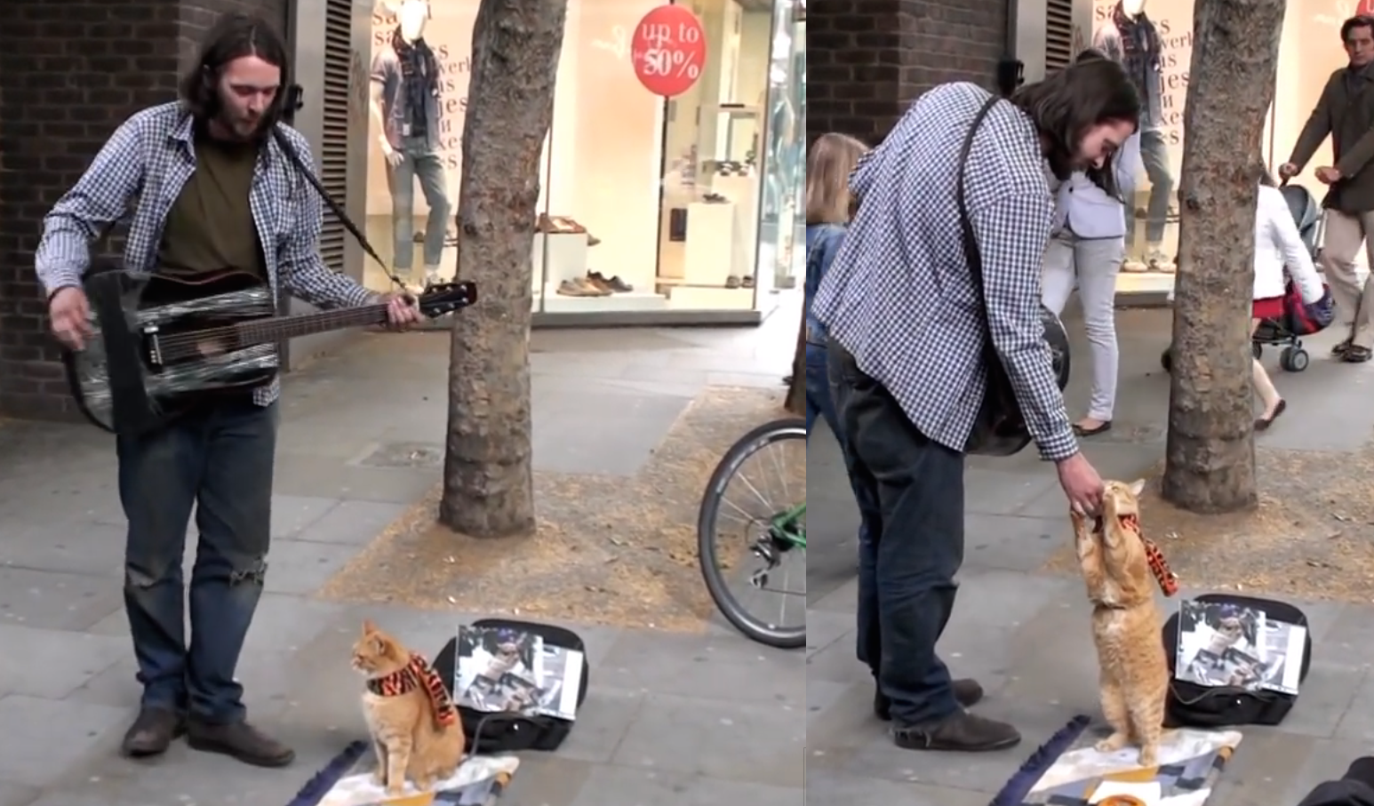 street-musician-with-his-cat