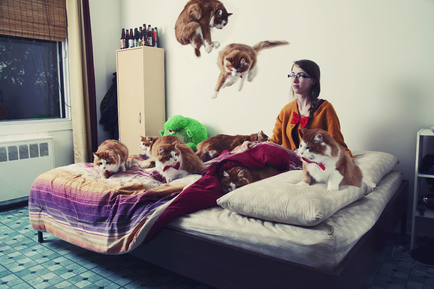 She Noticed Cats Running Everywhere, So She Started Taking Pictures... The Result? Amazing13