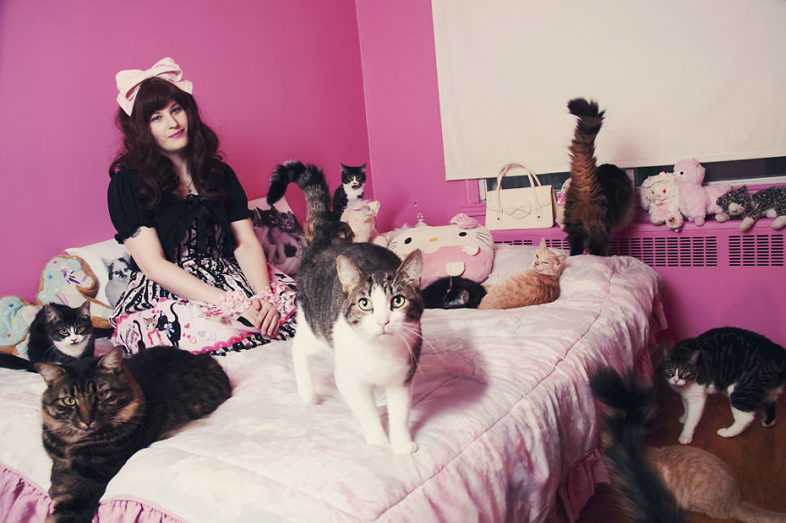 She Noticed Cats Running Everywhere, So She Started Taking Pictures... The Result? Amazing18