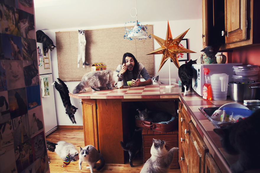 She Noticed Cats Running Everywhere, So She Started Taking Pictures... The Result? Amazing19