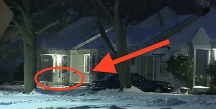 Someone Opened The Door And Saw A Cat FROZEN To The Porch… WATCH How He Survived!!