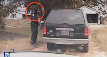 He Was Giving Her A Ticket, But This Kitty Wanted To Help! You'll NEVER Guess What Happened Next!