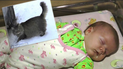 Stray Cat Noticed An Abandoned Baby Freezing To Death, But Something UNBELIEVABLE Happened…