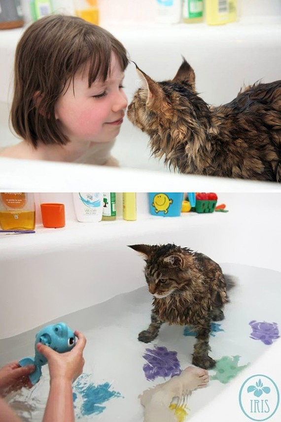 cats-loving-water-9