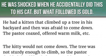 He Did Something Unthinkable To His Cat, But What Happened Next… UNBELIEVABLE.