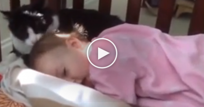 This Cat Started Licking The Baby, But Keep Watching… THIS Is Just Too Sweet, Awwww!!