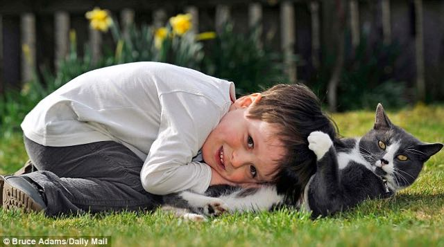 cat-and-autistic-boy-3