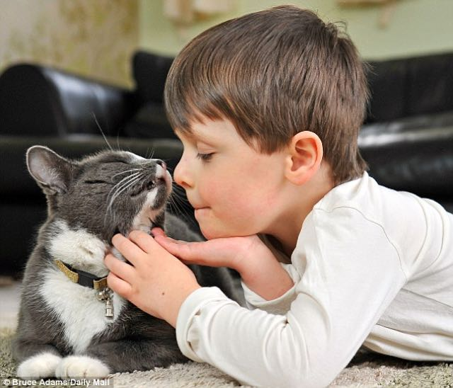 cat-and-autistic-boy-6
