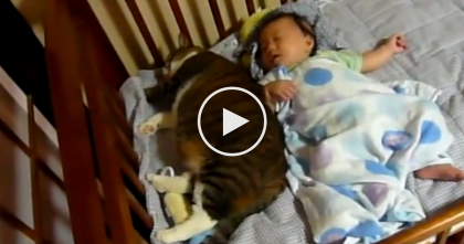 Baby Is Getting Some Sleep, But When They Walked Into The Room… Just Keep Watching.