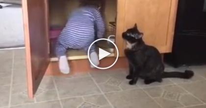Cat Comes Up With Genius Way To Trap Kid In The Cupboard… Just Watch, This Is Hilarious!