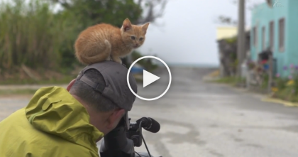 This Wildlife Photographer Started Taking Pictures, But You'll Never Guess What Happened Next!