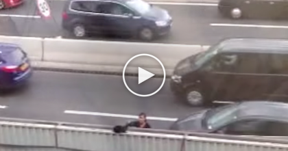 Brave Driver Noticed Something And Stops Her Car…Now Watch, Everyone's Cheering!!