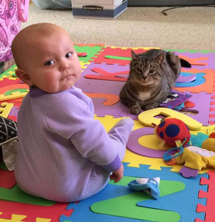 cat_baby_playtime