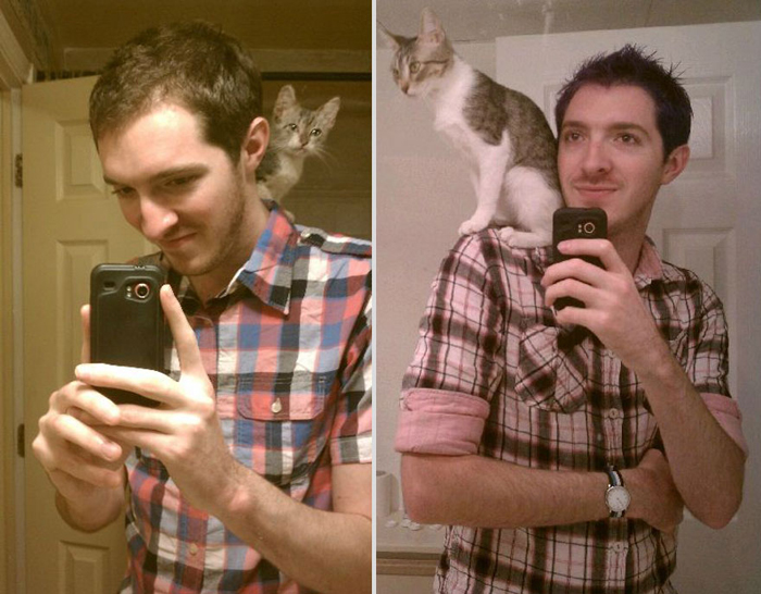 cat_on_shoulder