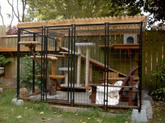 catio-cat-patio-7