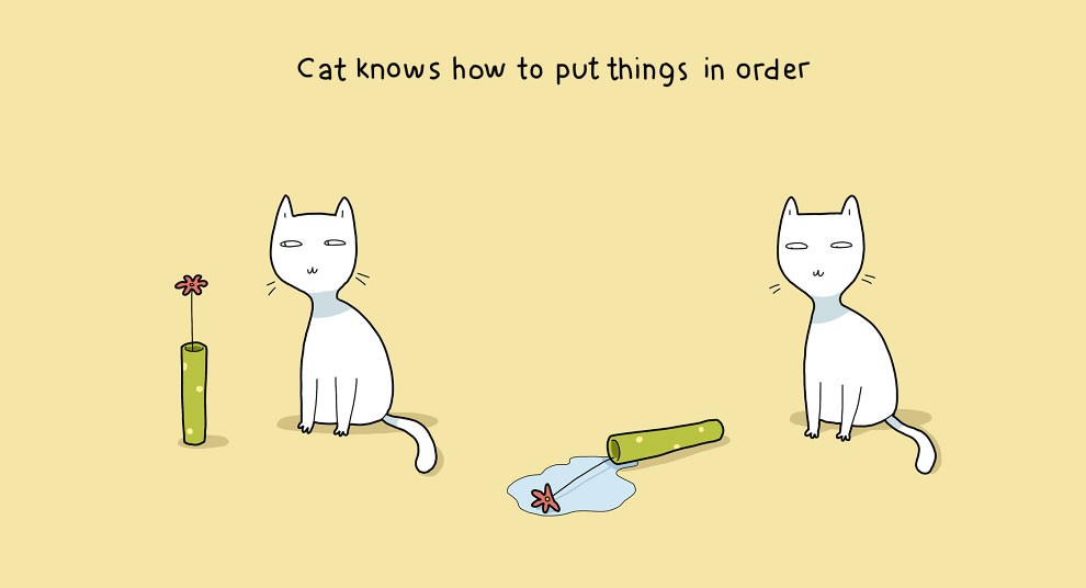 reasons-to-own-a-cat-9