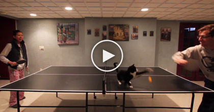 This Pro Ping Pong Player Isn't Who You Think It Is… And He's Crashing The Party!