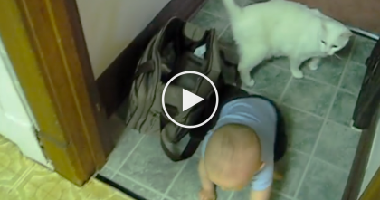 Baby Is Learning To Walk, But Just Watch Who's Helping Out… This Is SOO Sweet!
