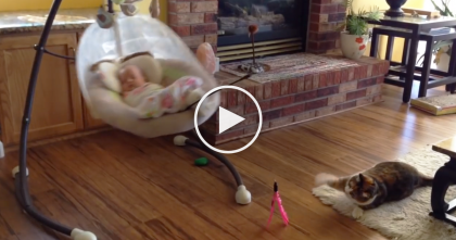 They Came Up With A Genius Way To Entertain Their Cat While The Baby Sleeps… Just WATCH.