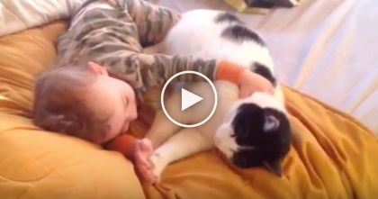 Kitty Snuggles Up Next To Baby Boy, But Watch The Results… It Just Melted My Heart, ADORABLE.