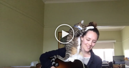 She's Trying To Play A Song, But This Kitty Steals The Show In The Cutest Way EVER…