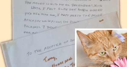 She's Was On Her Deathbed, But The Letter She Wrote…Now I'm In Tears…