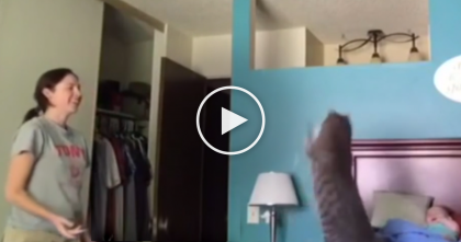Kitty Invents A New Game With His Human, But Wait Till You See The Baby's Reaction… OMG.