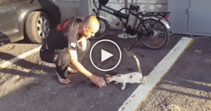 From Homeless And Trapped To Rescued And Saved, You've Gotta See The Ending To This Story…