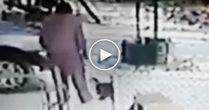 Horrid Women Kicks Snow At Cat's Face, But Then Gets EXACTLY What She Deserved…