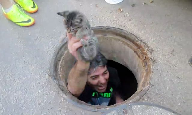 cat-rescue-from-storm-drain-3