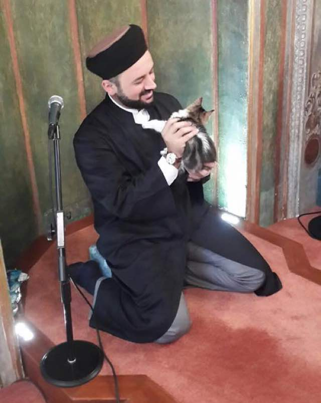 iman-shelters-kitties-in-his-mosque