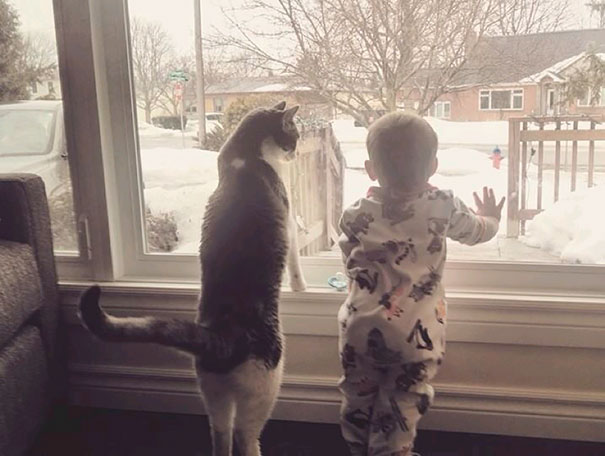 2-Kids-Need-A-Cat