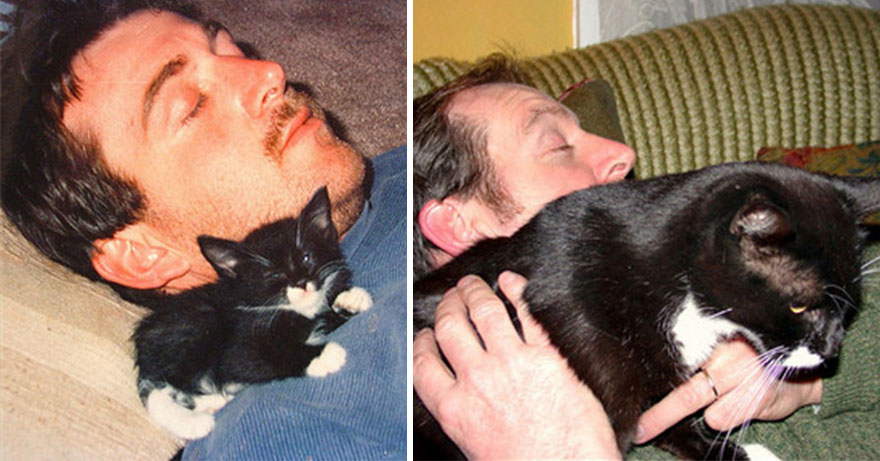 2-before-and-after-growing-up-cats