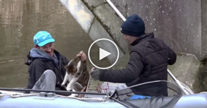 Their Cat Went Missing, But Then 15 Months Later…Now WATCH The Dramatic Rescue!