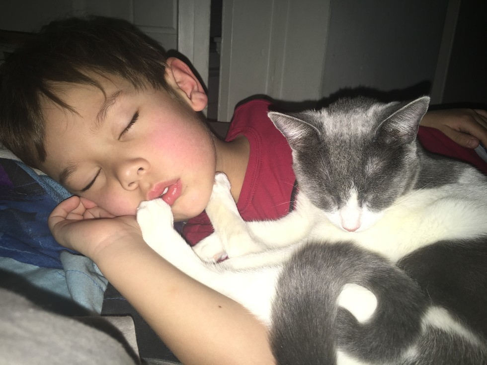 3_Boy_and_Cat_Snooze