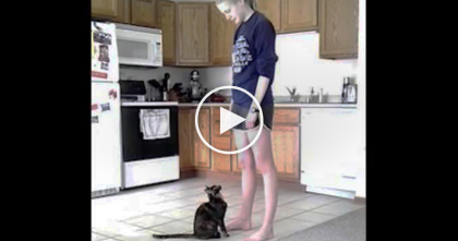 Whenever The Cat Feels Anxious, She Does THIS Every Time To Her Human…AWW So Precious!!