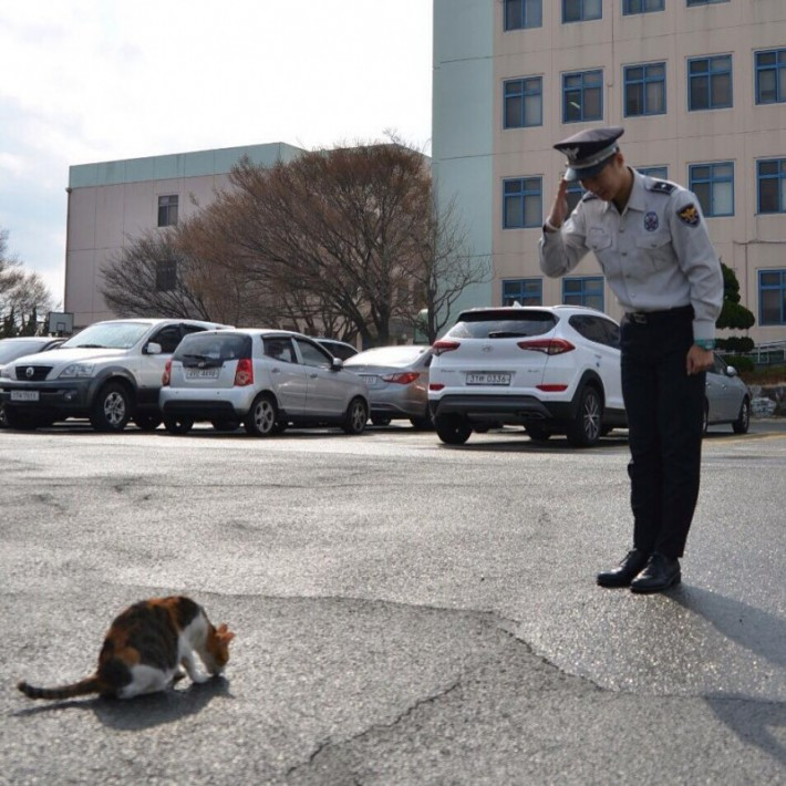 cat-goes-to-police-asking-for-help-but-you-wont-believe-the-surprise-they-got-next-2