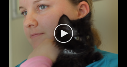 She Almost Never Talks, But When She's Around Black Cats, Something Amazing Happens…