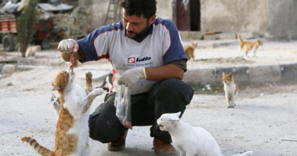 This Man Does Something Amazing For Poor Abandoned Cats In War-Torn Syria… A TRUE Hero!