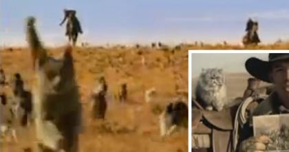 Hilarious Video Depicting Cowboys Rounding Up Cats Is Enough To Make Anyone laugh, LOL…