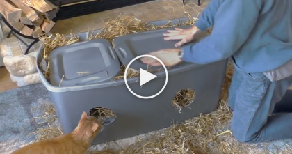 "Man Cuts Holes In Plastic Containers, But When He's Finished, It's The Most ""PURRFECT"" Idea EVER."