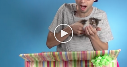 People Think They Are Taste Testing Chocolate…But Watch What They Find In The Box, My Heart Melted!