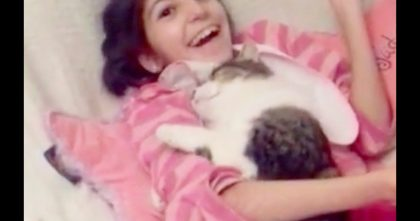 They Adopted A Unwanted Shelter Cat For Their Special Needs Girl, But The Reaction Will Melt Your Heart…