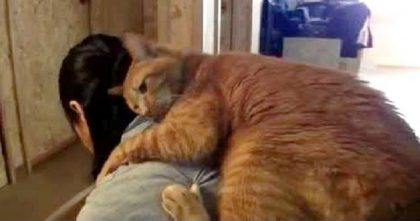 """When This Kitty """"Helps"""" His Mama Clean The House, It's The CUTEST Thing Ever… Awwwww!!"""