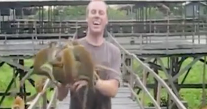 He's Trying to eat his banana, but when the monkeys notice it… Now watch their reaction, LOL!!