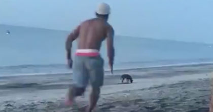 Man tries to kick a stray dog at the beach, but then gets exactly what he deserved