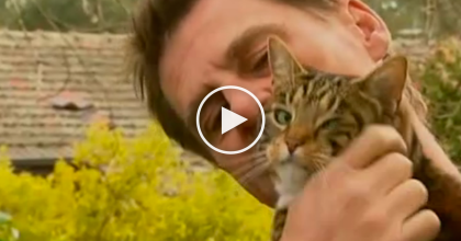 His House Was Burning Down, But Then His Cat Did Something Amazing! This Is Unbelievable…