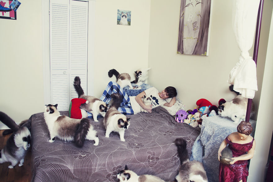 She Noticed Cats Running Everywhere, So She Started Taking Pictures... The Result? Amazing10