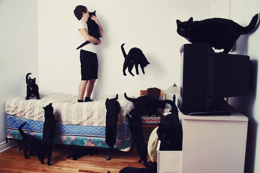 She Noticed Cats Running Everywhere, So She Started Taking Pictures... The Result? Amazing2