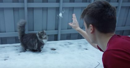 He Lets His Cat Outside To Discover The Snow, But Wasn't Expecting The Surprise He Got… Just WATCH